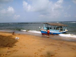 Tauchen direkt vor unserer Haustür, oder mit Tauchboten in 15 der schönsten Tauchgebiete Sri Lankas