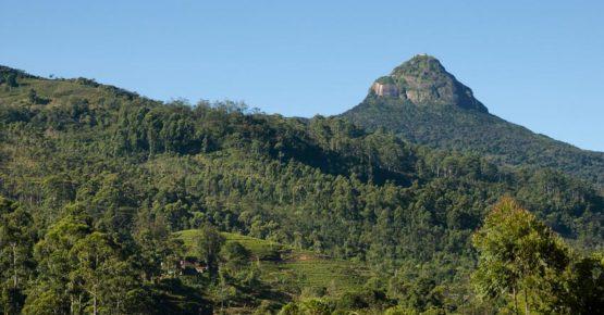 Adam's Peak - Sri Lanka