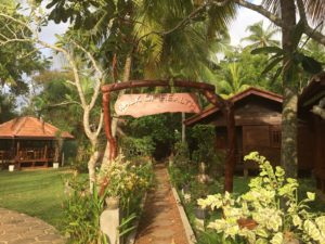 Der Weg zur Gesundheit - Panchakarma-Kur schafft ein seelisches Gleichgewicht